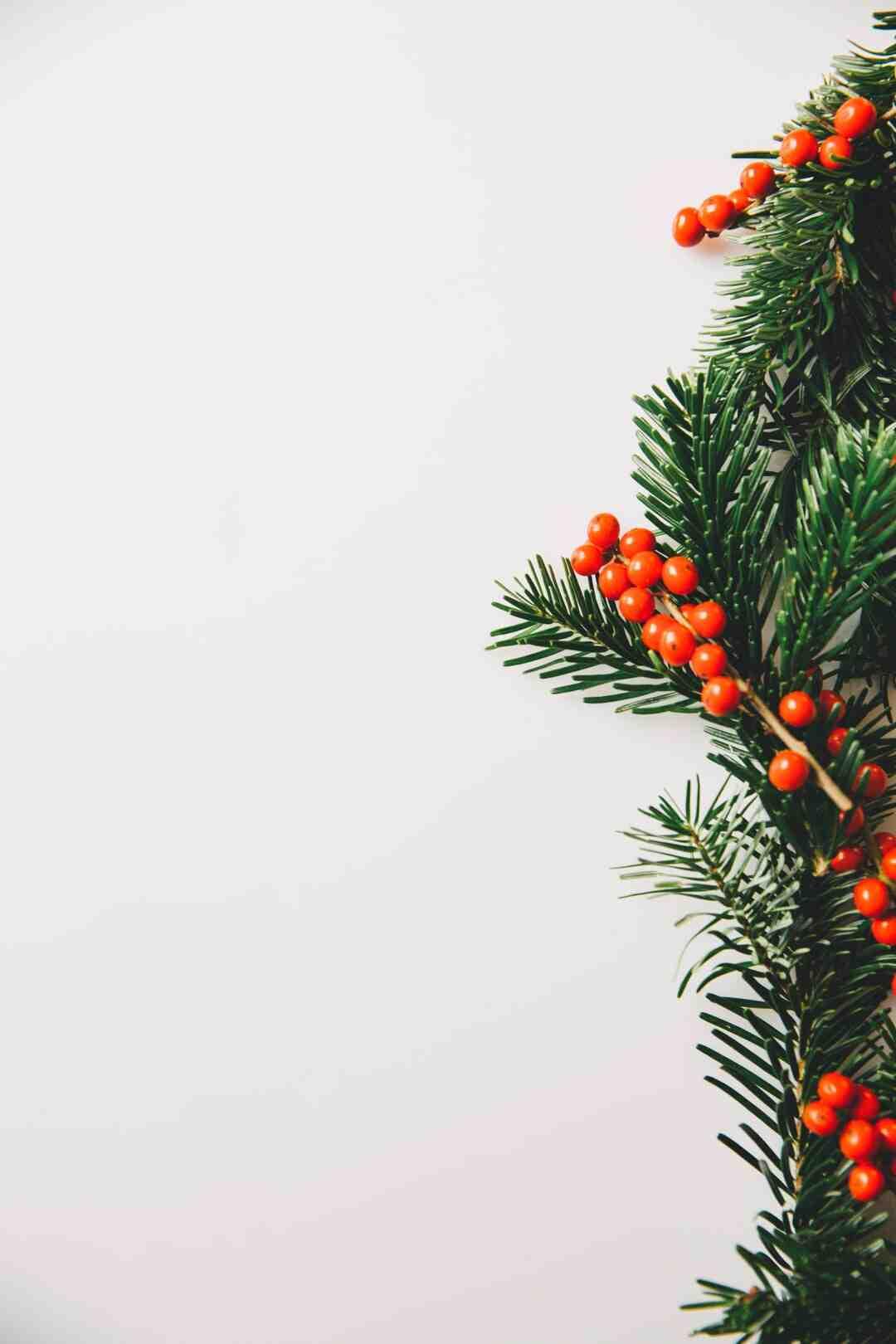 Marché de Noel à Vénissieux